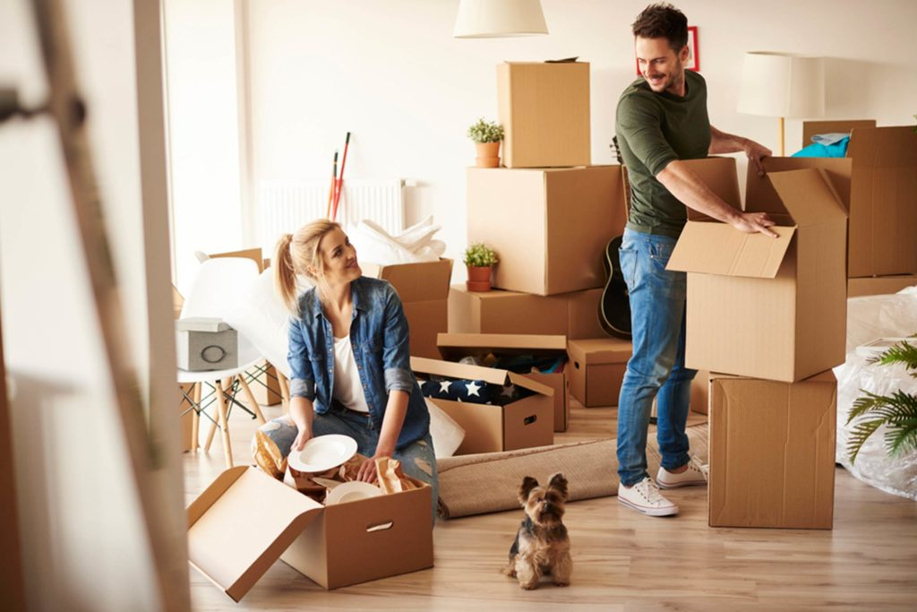 Moving Into a New Apartment