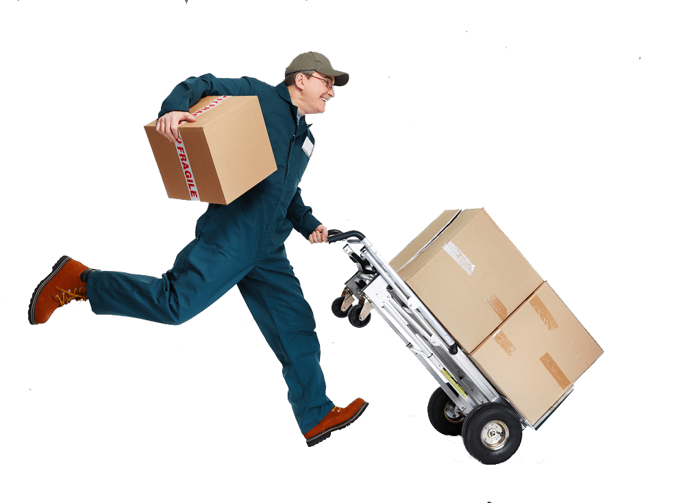 discovery gardens movers packers